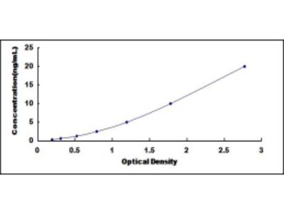 ELISA Kit for Aldehyde Oxidase 1 (AOX1)
