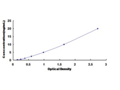 ELISA Kit for Glutamate Receptor, Ionotropic, N-Methyl-D-Aspartate 2C (GRIN2C)