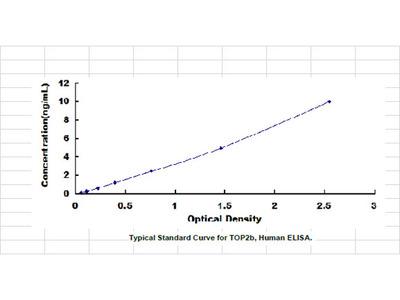 ELISA Kit for Topoisomerase II Beta (TOP2b)