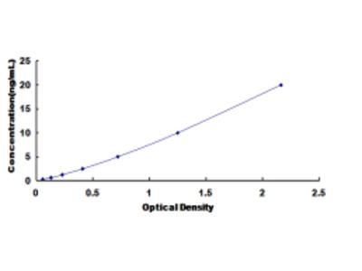 ELISA Kit for Protein Disulfide Isomerase A4 (PDIA4)