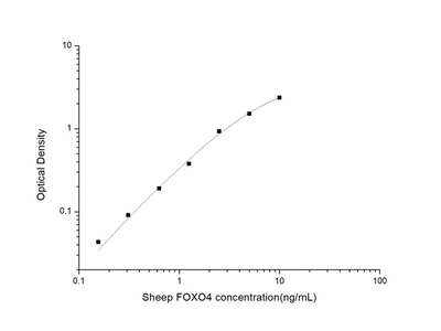 Sheep FOXO4 (Forkhead Box Protein O4) ELISA Kit