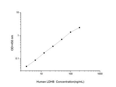 Human LDHB (Lactate Dehydrogenase B) ELISA Kit