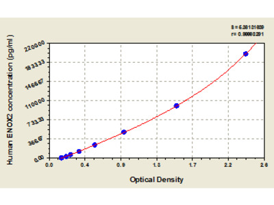 Human Ecto-NOX disulfide-thiol exchanger 2, ENOX2 ELISA Kit