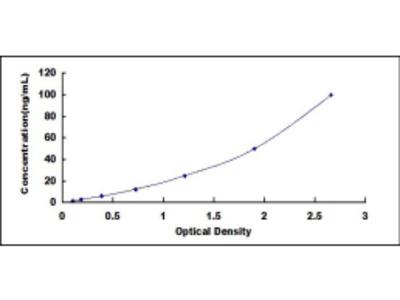 ELISA Kit for 17-Beta-Hydroxysteroid Dehydrogenase Type 1 (HSD17b1)