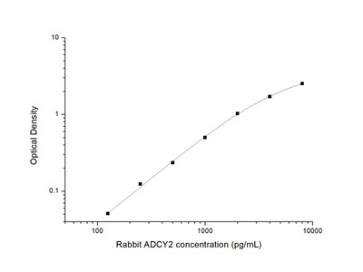Rabbit ADCY2 (Adenylate Cyclase 2) ELISA Kit