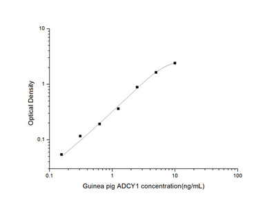 Guinea pig ADCY1 (Adenylate Cyclase 1, Brain) ELISA Kit
