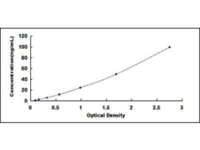 ELISA Kit for D-Amino Acid Oxidase (DAO)