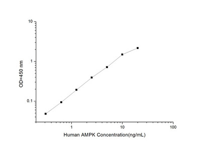 Human AMPK (Phosphorylated Adenosine Monophosphate Activated Protein Kinase) ELISA Kit