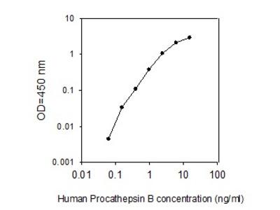 Human Pro-Cathepsin B ELISA
