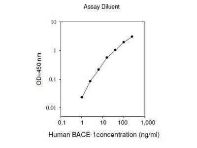 Human BACE-1 ELISA