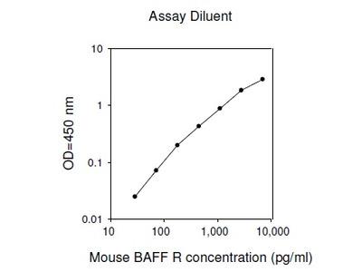 Mouse BAFF R ELISA