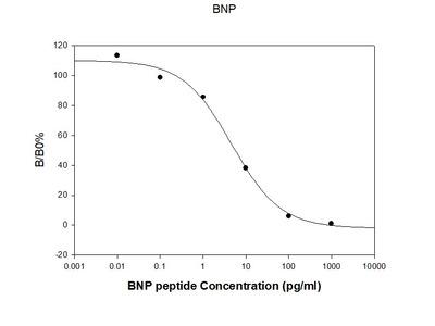 Mouse BNP EIA