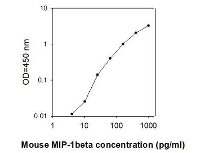 Mouse MIP-1 beta/CCL4 ELISA