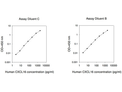 Human CXCL16 ELISA