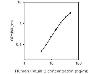 Human Fetuin B ELISA