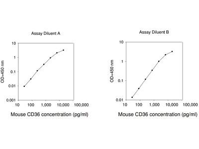 Mouse CD36 ELISA