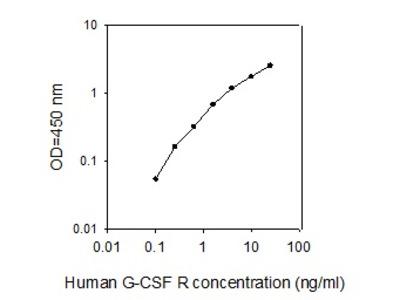 Human G-CSF R ELISA