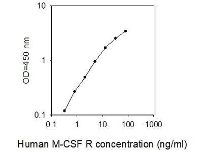 Human M-CSF R (CSF1 ELISA