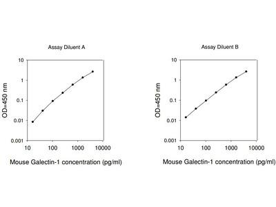 Mouse Galectin-1 ELISA