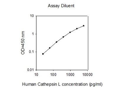 Human Cathepsin L ELISA