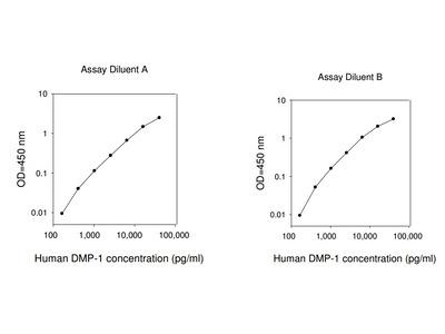 Human DMP1 ELISA