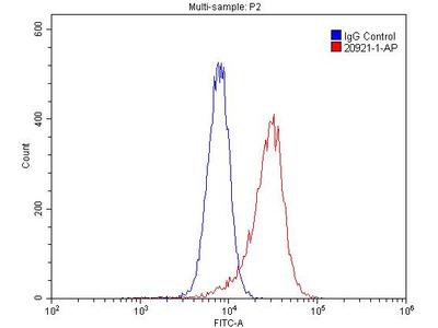 PTAFR Polyclonal Antibody