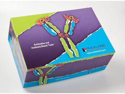 Epitope Tag Antibody Sampler Kit