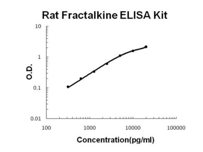 Rat Fractalkine ELISA Kit