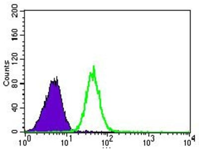 Anti-PSAP antibody [4D5F4]