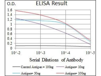 Anti-Lplunc1 antibody [1F11E3]