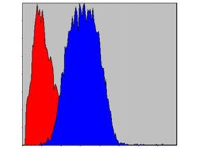 Anti-CD133 antibody [3F10]