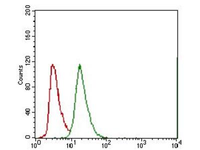 Anti-ABCG5 antibody [1B5E10]