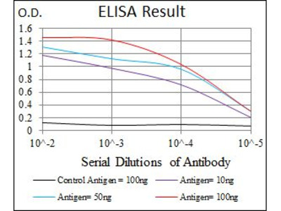 Anti-alpha Tubulin 8 antibody [2D6]