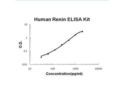 Human Renin ELISA Kit