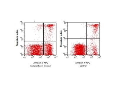 Annexin V (APC) /PI Apoptosis Detection Kit (APC)