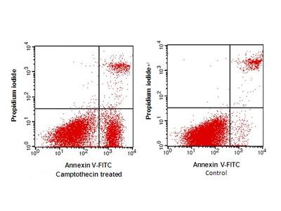 Annexin V (FITC) /PI Apoptosis Detection Kit