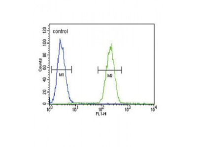 Gastric Inhibitory Polypeptide Receptor (GIPR) Antibody