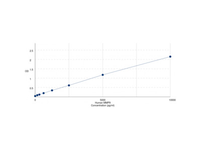 Human Matrix Metalloproteinase 9 (MMP9) ELISA Kit