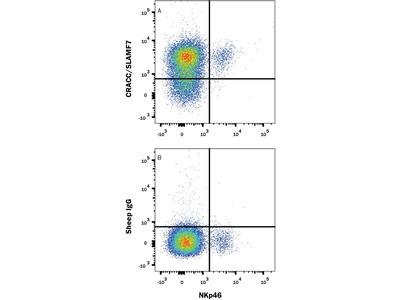 CRACC / SLAMF7 APC-conjugated Antibody
