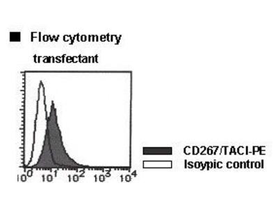 Anti-CD267 (TACI) (Human) mAb-PE
