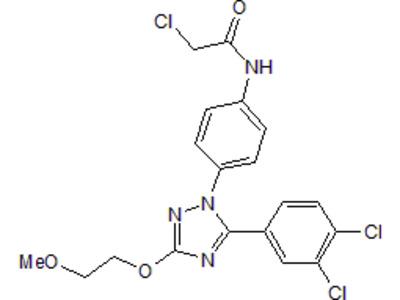 Mucosa Associated Lymphoid Tissue Lymphoma Translocation Gene 1