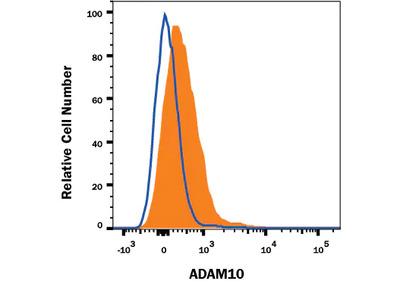 ADAM10 Alexa Fluor 700-conjugated Antibody