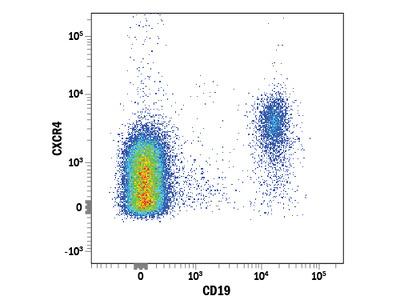 CXCR4 APC-conjugated Antibody