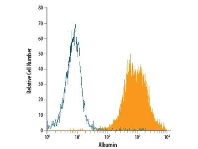 Serum Albumin APC-conjugated Antibody