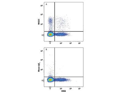NKG2C / CD159c PE-conjugated Antibody