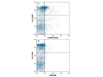 G-CSFR /CD114 APC-conjugated Antibody