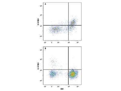 Human IL-12 R beta 1 PE-conjugated Antibody