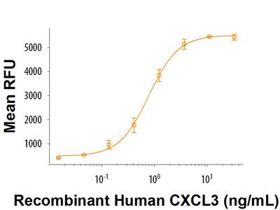 CXCL3 / GRO gamma / CINC-2 / DCIP-1 (aa 39-107) Protein