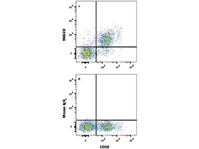 NKG2D / CD314 APC-conjugated Antibody