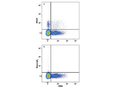 NKG2C / CD159c APC-conjugated Antibody